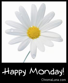 http://www.chromaluna.com/content/comments/weekdays/monday/happy_monday_daisy.JPG